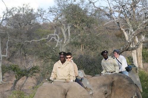 Alan and Sara on elephant back safari