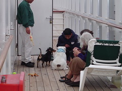 QM2 kennel on Deck 12