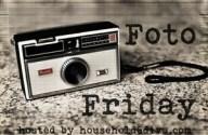 Household6Diva FotoFriday