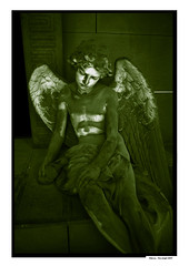 angel cimetière Genova