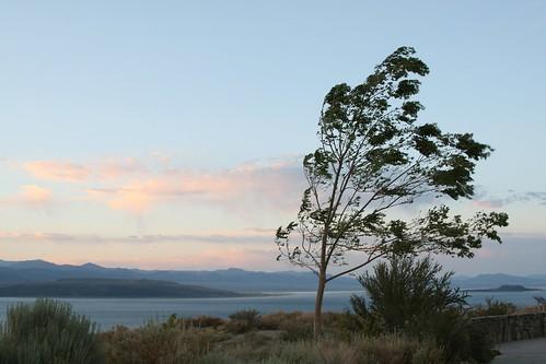 Mono Lake wind