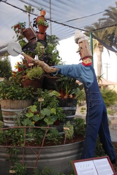 garden exhibits at the county fair