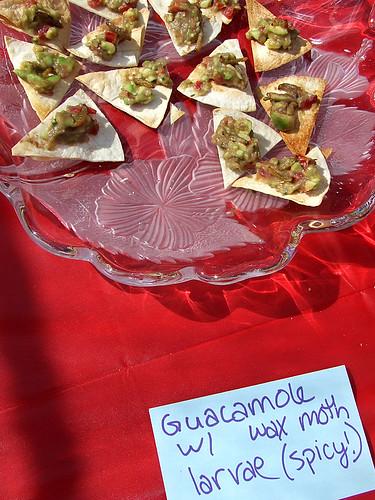 wax moth guacamole