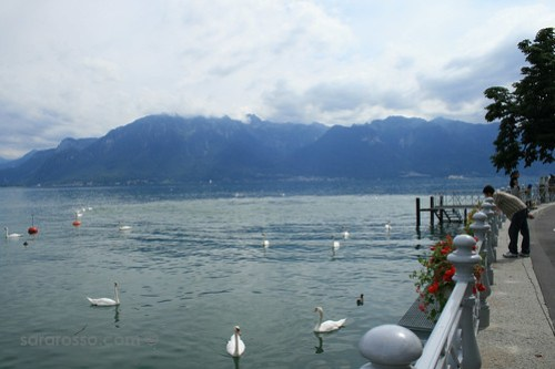 Vevey Harbor