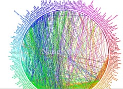 nancys network