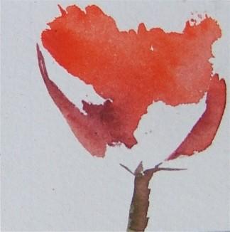 Poppy single