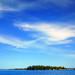 Kingston Paradise