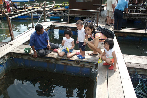 Mangrove Tour - Fish Farm - 2.jpg