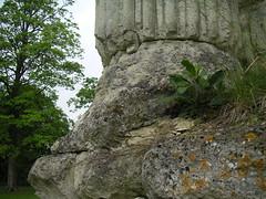 The grind of Time  Château de Monceaux les Meaux