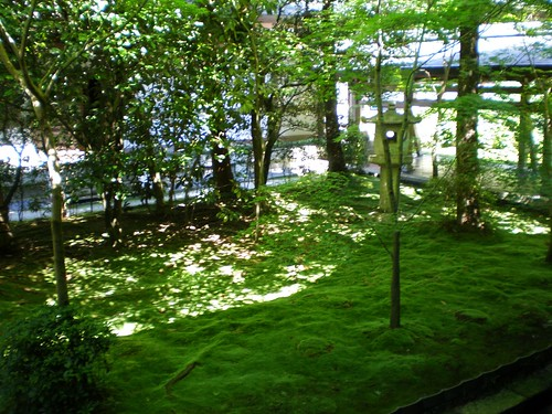 Bosque Ryoanji