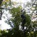 20070927-DSCF0028-4.jpg