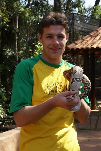 Boa Constrictor in vogelpark Brazilie