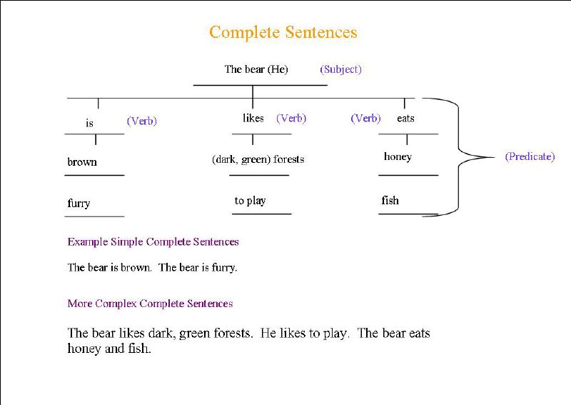 complete sentences tree map