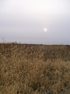 20101203_bartel2