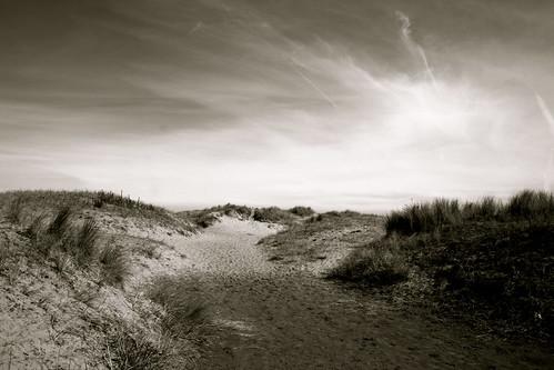 Onto the dunes