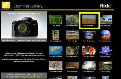 Nikon Stunning Gallery Selection