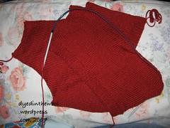 wren second sleeve