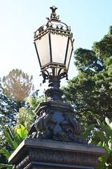Botanical Lighting
