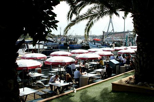 Sydney Fish Market 3