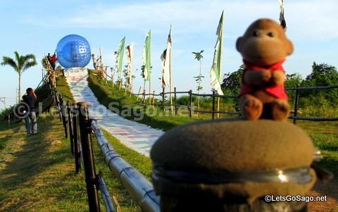 Sago in Davao Zorb Park