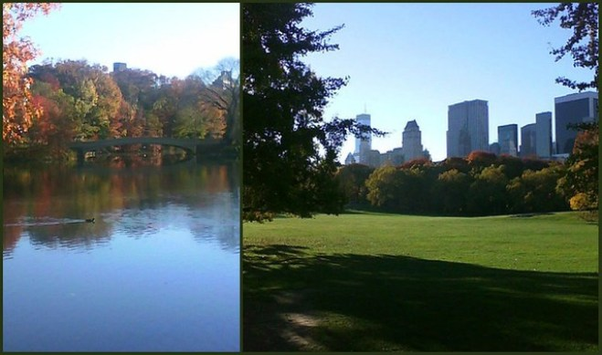 Jogging in Central Park