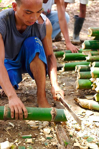 man bamboo cutting la union kawayan Pinoy Filipino Pilipino Buhay  people pictures photos life Philippinen  菲律宾  菲律賓  필리핀(공화�) Philippines