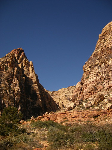 Pine Creek Canyon (in Red Rock Canyon)