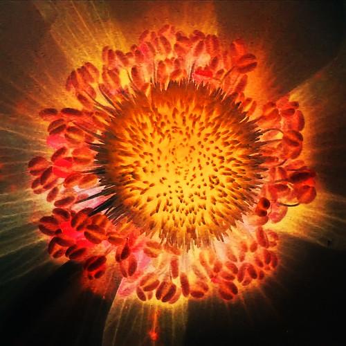 The Big Bang by ToniVC