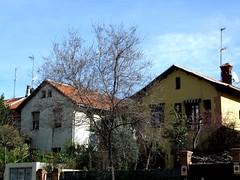 Jard�n de la Rosa-Calle Alfonso XIII-1-2007-0