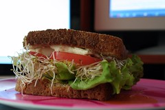 Creating a healthy sandwich (generation)