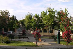 Colonia Los Rosales
