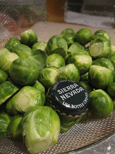 tiny brussels