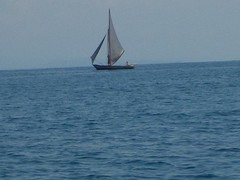 Pêche à la voile