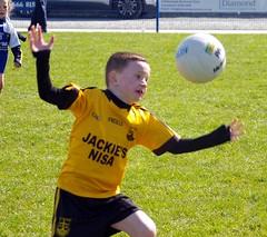 028 Loughmacrory at U8 Football Blitz Apr2016