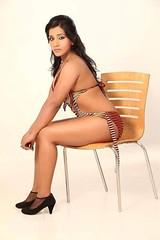 Bollywood Actress NISHA YADAV-HOT AND SEXY IMAGES-SET-3 (40)