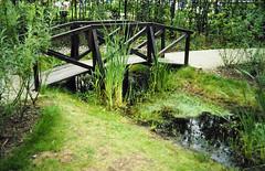 Aug86 36 - Historic Parkland (2)