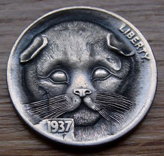 """'Mountain Lion Cub' Hobo nickel/coin carving • <a style=""""font-size:0.8em;"""" href=""""http://www.flickr.com/photos/72528309@N05/24617219266/"""" target=""""_blank"""">View on Flickr</a>"""