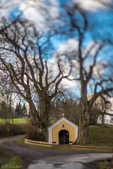 "Nabburg by the Lensbaby Edge80 • <a style=""font-size:0.8em;"" href=""http://www.flickr.com/photos/58574596@N06/24392719493/"" target=""_blank"">View on Flickr</a>"