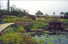 24-0886 07 - Royal Parks (2) edited-1
