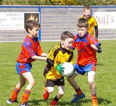 087 Loughmacrory at U8 Football Blitz Apr2016
