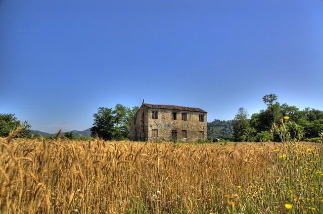 Rudere rurale - Rural ruin