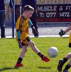 017 Loughmacrory at U8 Football Blitz Apr2016
