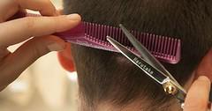 """Die Haare schneiden. Dem Mann werden die Haare geschnitten. • <a style=""""font-size:0.8em;"""" href=""""http://www.flickr.com/photos/42554185@N00/25961872603/"""" target=""""_blank"""">View on Flickr</a>"""