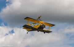 Skycats Catwalk