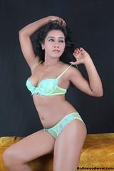 Bollywood Actress NISHA YADAV-HOT AND SEXY IMAGES-SET-1 (23)