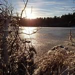"""A winters day. #winter #navinter #Stockholm #shockholm #stockholminsta #awesomepicture #picoftheday #z5compact #bromma #Judarn #judarnskogen #lake #sjö #december #ice #snow #visitsweden #visitstockholm <a style=""""margin-left:10px; font-size:0.8em;"""" href=""""http://www.flickr.com/photos/131645797@N05/23415094604/"""" target=""""_blank"""">@flickr</a>"""