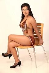 Bollywood Actress NISHA YADAV-HOT AND SEXY IMAGES-SET-3 (45)