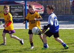 036 Loughmacrory at U8 Football Blitz Apr2016