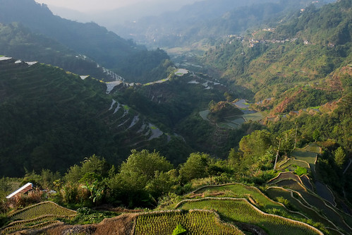Morning at Banaue viewpoint