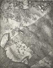 P. GIORDANO_Umiltà, acquaforte e acquatinta, 2006